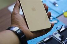 Chưa lên kệ, iPhone 11 Pro Max đã bị mổ bụng tại Việt Nam