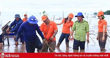 2.000 cây bần để giữ đất được FPT Software ươm mầm tại rừng ngập mặn Sóc Trăng