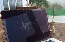 Apple thay miễn phí MacBook Pro bị lỗi lớp phủ chống chói