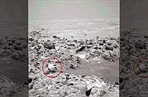 Gương mặt bí ẩn trên sao Hỏa