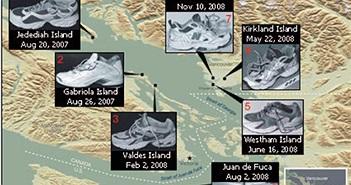 Bí ẩn 14 bàn chân mang giày thể thao trôi dạt vào bờ biển hơn 10 năm qua