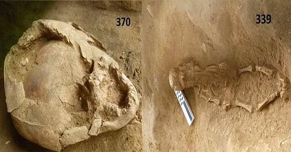 """""""Mũ bảo hiểm"""" làm từ hộp sọ hàng nghìn năm trước"""