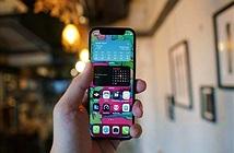 iPhone 12 mini bị lỗi màn hình