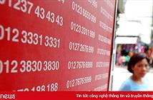 Thứ trưởng Phạm Hồng Hải: Năm 2018 thực hiện chuyển đầu 11 số thành đầu 10 số