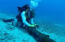 Cáp quang biển AAG sắp bảo trì, internet quốc tế bị chậm lại