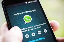 Facebook ra mắt WhatsApp Business dành cho doanh nghiệp nhỏ