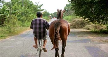 Chuyện kỳ lạ nơi đàn ông mê ngựa hơn mê... vợ