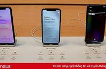 Doanh số iPhone sắp giảm mạnh, nhà đầu tư có thể xem xét bán ngay cổ phiếu Apple