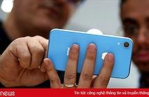 Lý do duy nhất để người dùng mua iPhone XR thay vì iPhone SE