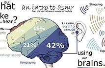 Hiện tượng ASMR - Phản ứng kích thích cảm giác tự động