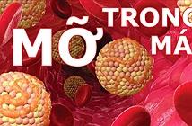 Những tác hại của máu nhiễm mỡ cực kỳ nguy hiểm