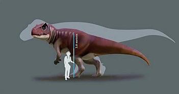 """Phát hiện dấu chân """"quái dị long"""" dài 80cm ở Australia"""