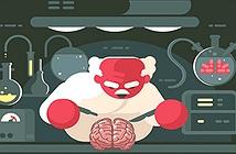 Tại sao chúng ta không thể ghép não?