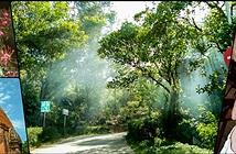 [Hình ảnh] Bộ ảnh chụp thử bằng Oppo A37f: chụp RAW, phơi sáng 16s, chất lượng và màu sắc khá tốt