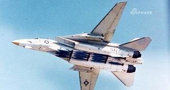 """Tiết lộ chấn động: Trung Quốc từng muốn """"ăn cắp"""" F-14 Tomcat"""
