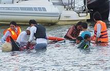 Cá voi hoa tiêu mang thai tại Ninh Thuận chết do ngộ độc?