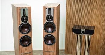 """Review DALI Rubicon 6C - Loa không dây có sức """"công phá"""" những bản thu phức tạp"""