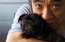 Những chú chó nhân bản giá 100.000 USD