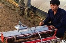 Nông dân Hải Dương chế robot, Israel ngả mũ bái phục