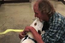 Video: Người đàn ông vô gia cư đoàn tụ với chó cưng sau gần 2 tuần mất tích