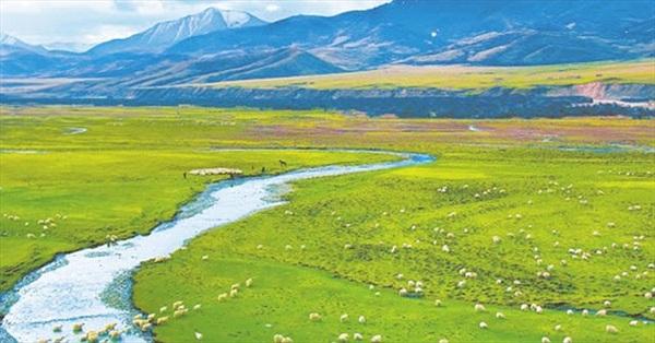 """Trung Quốc sắp xây xong công viên 123.000 km2 trên """"mái nhà của thế giới"""""""