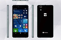 Công ty Đức kêu gọi người dùng gây quỹ để... sản xuất điện thoại Windows Phone