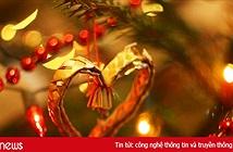 Những câu chúc Giáng sinh cho người yêu hay, ý nghĩa nhất