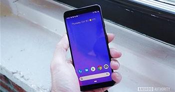 Google từng cân nhắc trang bị màn hình 120Hz cho Pixel 3