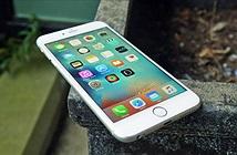 Bộ Công Thương giám sát việc Apple làm chậm tốc độ iPhone đời cũ