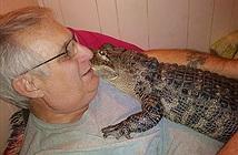 Bí kíp biến cá sấu thành bạn của người đàn ông 65 tuổi