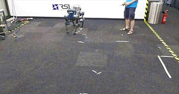 Chó robot của Thụy Sỹ không ngã khi bị người đạp, nếu ngã biết tự lật đứng dậy