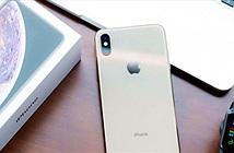 Những iPhone cũ dưới 15 triệu đồng cực bền bỉ, chụp ảnh bao đẹp