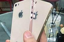iPhone SE 2 ra mắt trong tháng 5?