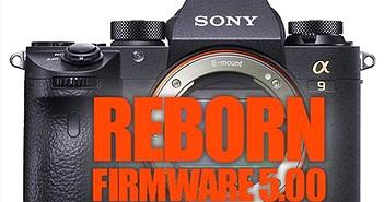 Sony A9, A7R III/A7 III nâng cấp toàn diện với bản cập nhật mới