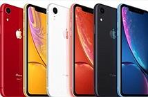 Nên mua iPhone SE 2020 hay iPhone XR một thời hoa lửa?