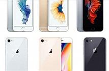 Chênh từ 12-16 triệu đồng, iPhone 6s vẫn tuyệt vời hơn so với iPhone X, iPhone 8
