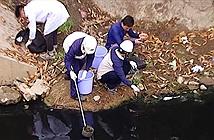 Sông Tô Lịch sau 4 ngày lọc nước: Bất ngờ kết quả test nhanh