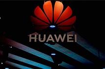 Hãng nào đắc lợi sau vụ Google chia tay Huawei?