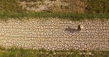 Hạn mặn ở ĐBSCL: Thích ứng với một tương lai nhiều rủi ro