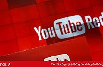 YouTube thử nghiệm công cụ chống khủng bố mới nhất
