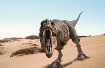 Nghiên cứu: T-rex quá nặng để chạy nhanh như trong phim