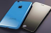 Foxconn nhập lô màn hình 4 inch, có thể vì iPhone 6C