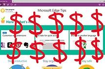 Microsoft mang tiền ra dụ người dùng xài Edge và Bing