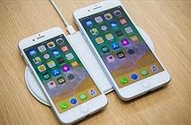 Tâm lý chờ iPhone X khiến đơn hàng iPhone 8, 8 Plus thấp hơn dự kiến