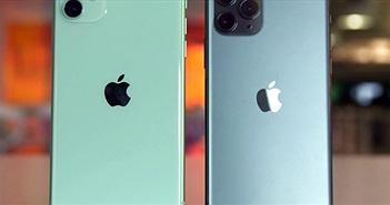 """Không chỉ """"ngon"""", iPhone 11 và iPhone 11 Pro còn thân thiện môi trường"""