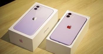 Cập nhật giá 3 dòng iPhone 11 ngày 21/9, 5 ngày nữa giá ổn định