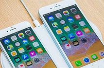 Chủ nhiệm Văn phòng Chính phủ: Điện thoại iPhone 8 có cần kiểm tra không?