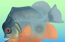 Loài cá ăn thịt sớm nhất, sống cùng khủng long
