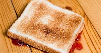 Nghiên cứu: Quy tắc 5 giây sau khi rơi thức ăn không an toàn