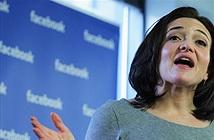 COO Facebook: Không cần có bằng MBA để thành công trong công nghệ